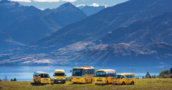 Transportation in Wanaka - Wanaka bus