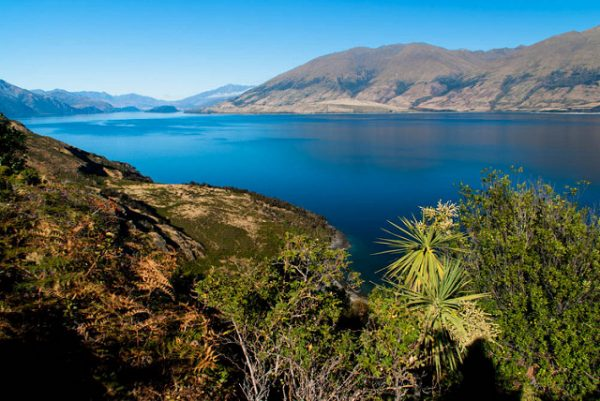 must do in Wanaka