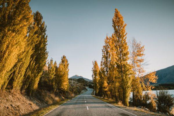 wanaka autumn