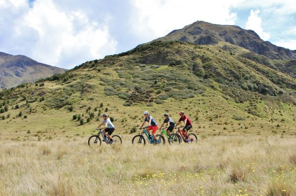 things to do in wanaka in summer