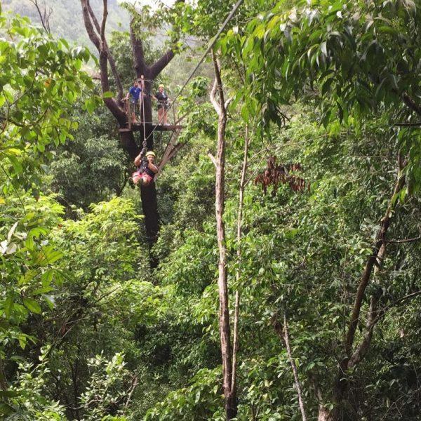 Canopy Adventure in Koh Samui