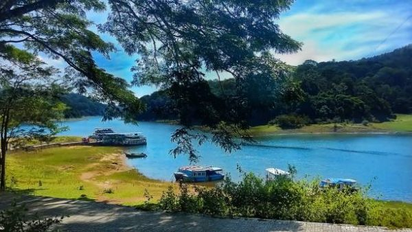 kerala national park