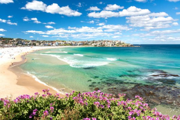 Sydney with kids: check out the beaches